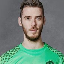 David De Gea - in fine form